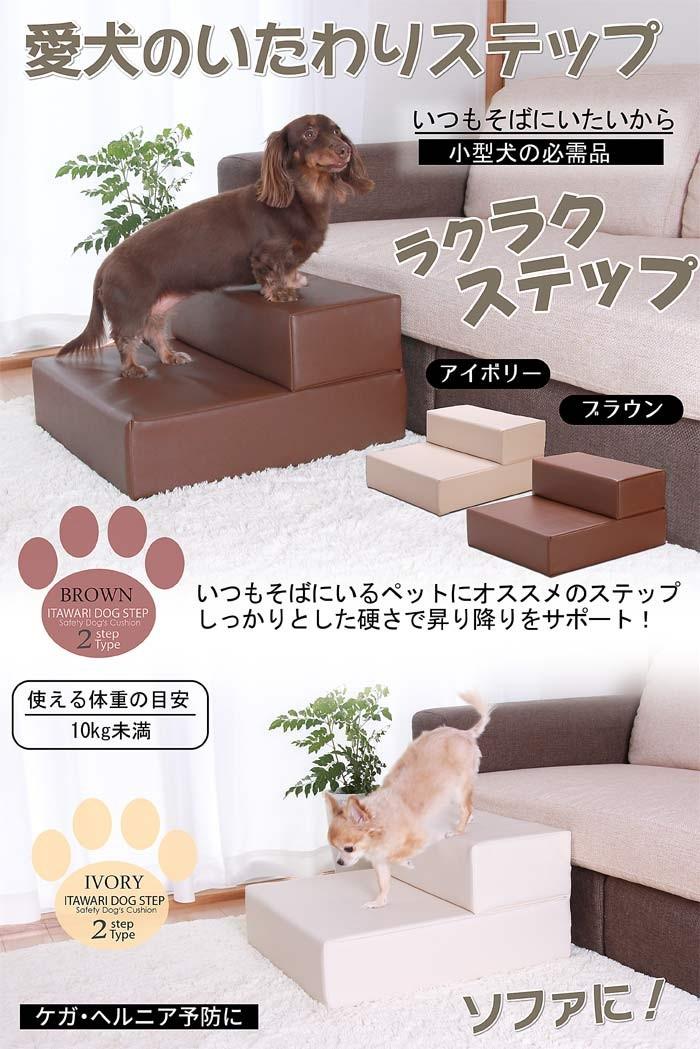 【愛犬のいたわりステップ】