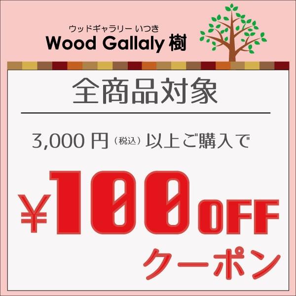 5回使える100円OFF