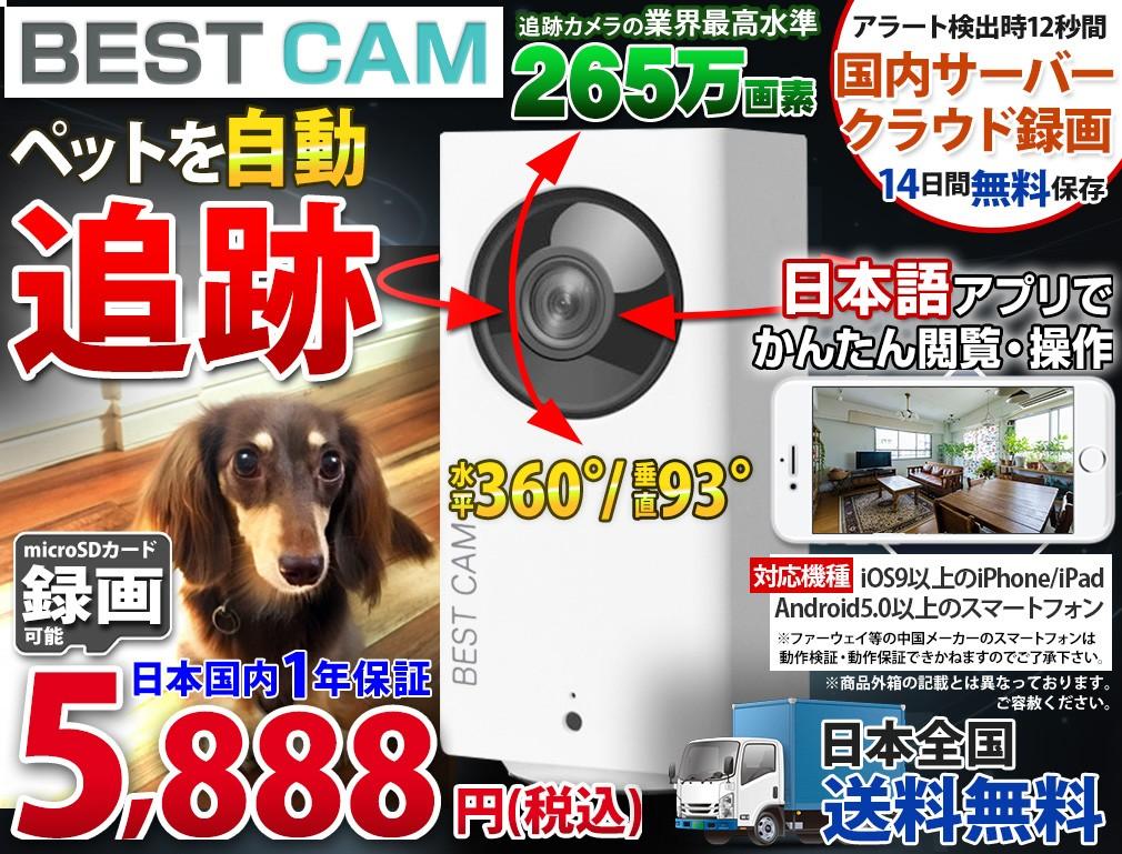 防犯カメラ ワイヤレス 無線 屋外 長距離 赤外線カメラ WTW 塚本無線