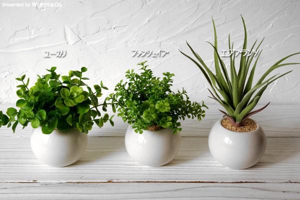 光触媒加工の人工観葉植物