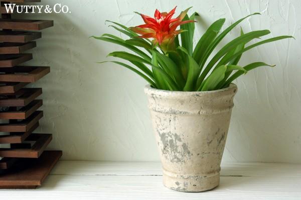 シャビーな雰囲気の植木鉢|【インテリア雑貨】
