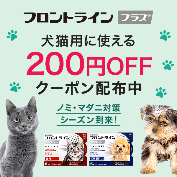 【フロントライン プラス6本入12本入】対象商品200円OFF