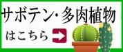 サボテン・多肉植物