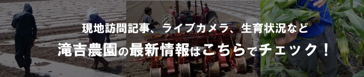 滝吉農園の最新情報はコチラでチェック!