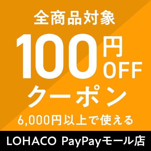 【ストア内全商品対象】100円OFFクーポン