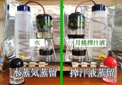 水蒸気蒸留法と搾汁液蒸留法の違い