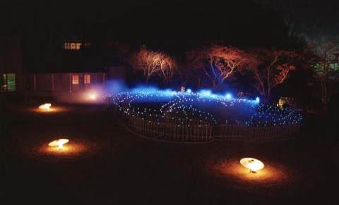 城崎温泉「銀花」ライトアップ