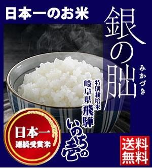 岐阜県飛騨産 銀の朏 八重洲工房