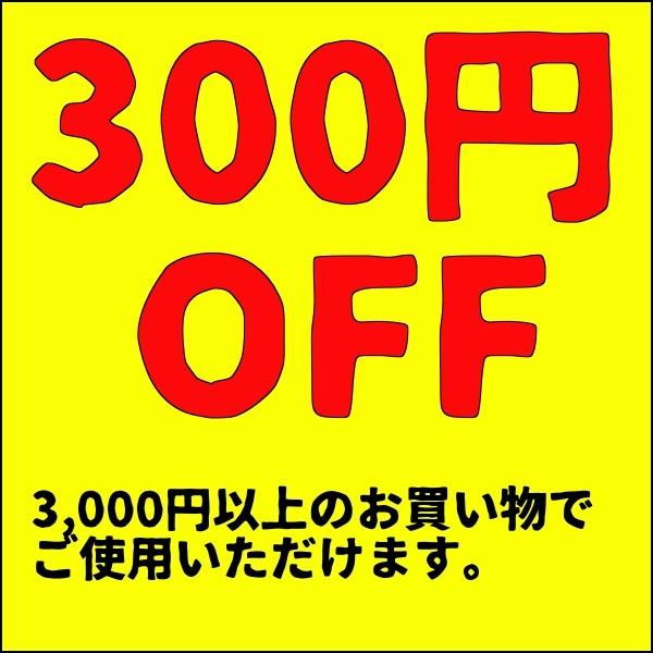 4時間限定超お得な300円OFFクーポン!!
