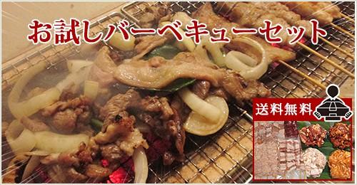 送料無料 北海道産 春のお試しバーベキューセット!!