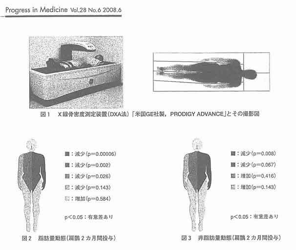 医学文献;Progress in Medcine Vol.28 (6) :1565-1569, 2008