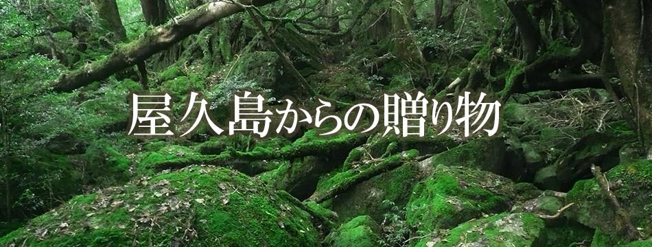 屋久島からたんかん、飛魚などを原料に使用した特産品をお届け