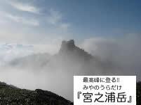 屋久島ツアー