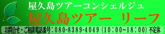 yakushimaleaf top ネネット ボンレーヴ