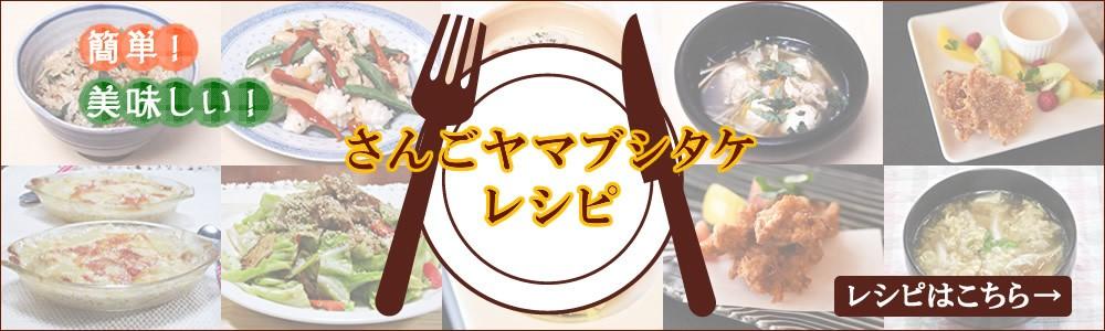 さんごヤマブシタケのレシピはこちら