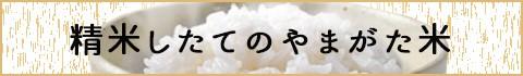 精米したてのやまがた米
