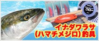イナダワラサ(ハマチメジロ)釣具