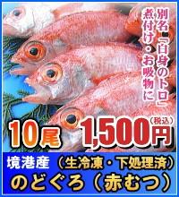境港産 のどぐろ(赤むつ)(生冷凍・下処理済み) 小サイズ 10尾