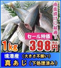 境港産 真あじ(大きさ不揃い) 1kg