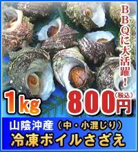 山陰沖産 冷凍ボイルさざえ(中・小混じり) 1kg