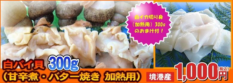 お得なセット登場! 白バイ貝(甘辛煮・バター焼き 加熱用)300g + 白イカ切り身(炒め物・天ぷら 加熱用)300g