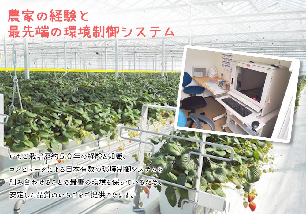 環境制御システムと農家の知恵の融合