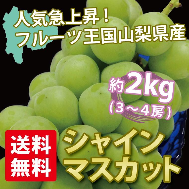 葡萄(ぶどう)「シャインマスカット」2kg