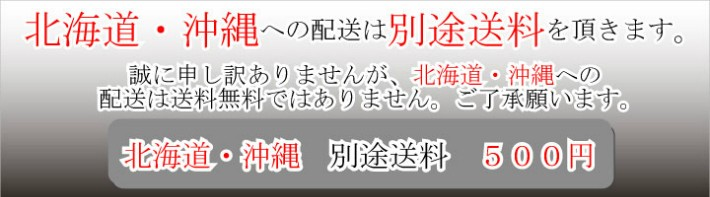 北海道・沖縄は別途送料