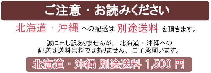 北海道・沖縄は別途送料※+1,500円