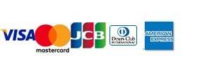 対応クレジットカーどの種類 VIsa Mastercard JCB Dinners American express