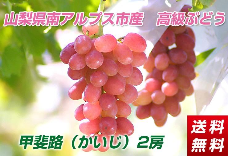 高級ぶどう「甲斐路」1kg【送料無料】