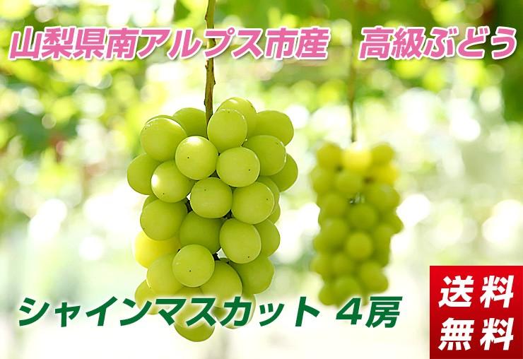 高級ぶどう「シャインマスカット」2kg【送料無料】