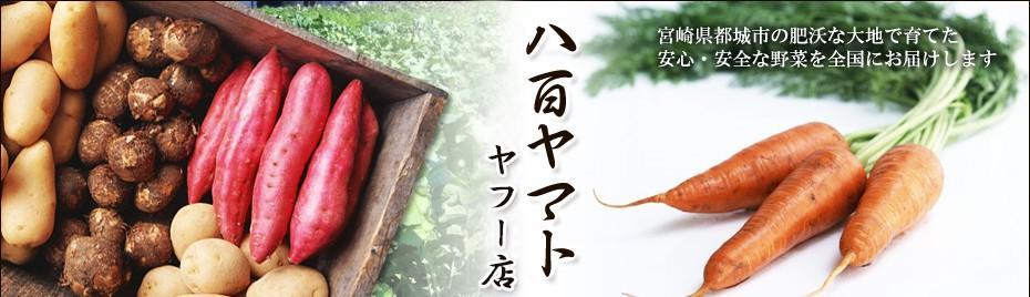 yaoyamato