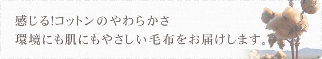 ベビーケット・ひざ掛け・クォーターケット・ブランケット