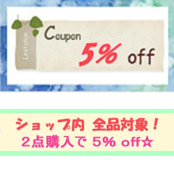 ★2点購入で全品5% off クーポン