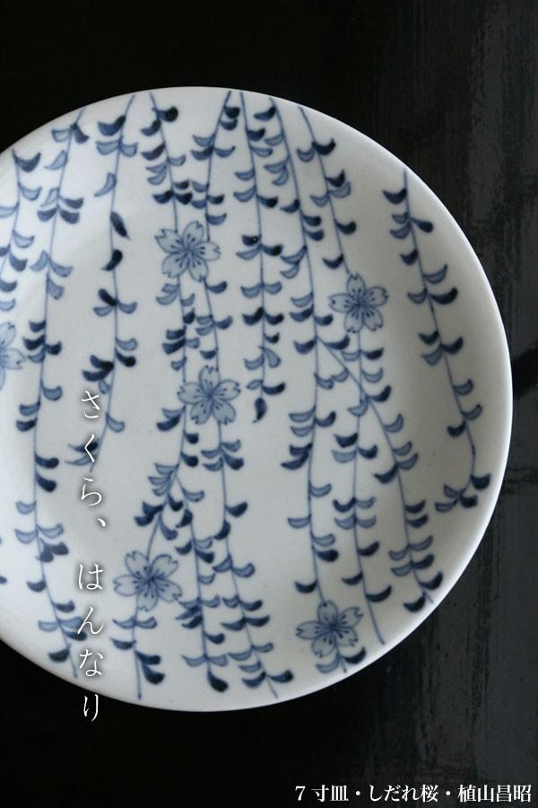 7寸皿・しだれ桜・植山昌昭