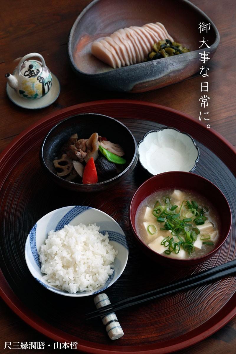 【一汁一菜】豆腐、ねぎ