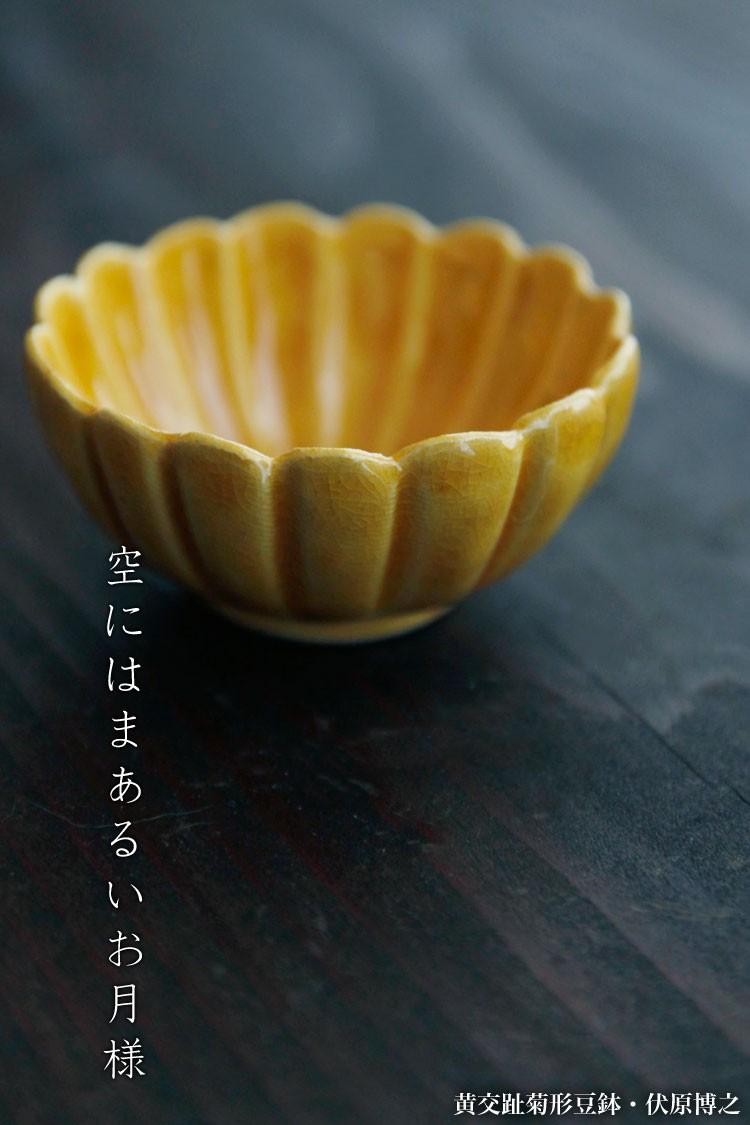 黄交趾菊形豆鉢・伏原博之