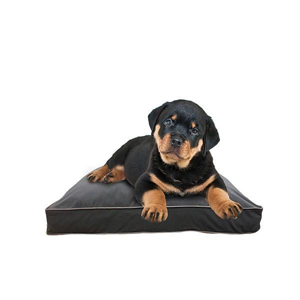 Doggybo Mini / ドギボー ミニ / 快適すぎて動けなくなる魔法のソファ / ペット / クッション / ベッド / 小型|yogibo|08