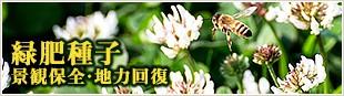 緑肥種子 景観保全・地力回復