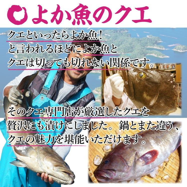 長崎 よか魚 海仙漬 クエ 鯛 ブリ 鮮魚 鯛茶漬け 活かし真鯛 特製ダレ 漬け ヅケ ギフト 贈り物 母の日 父の日