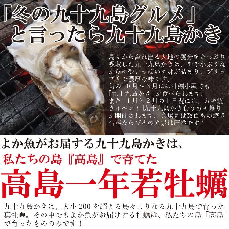 高島一年若牡蠣 真牡蠣 九十九島 かき カキ