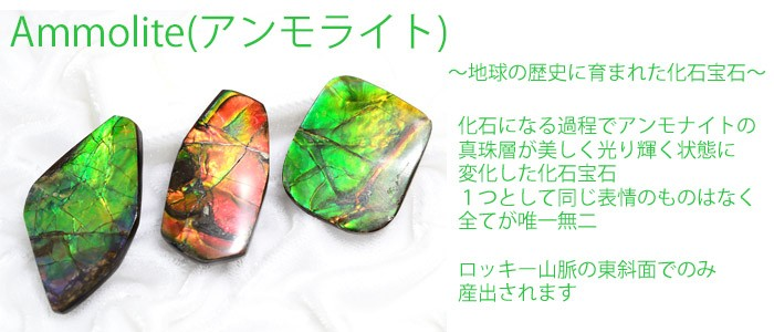 アンモライト ammolite