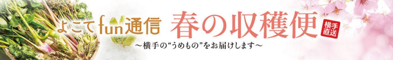 横手市ファン通信秋田の魅力