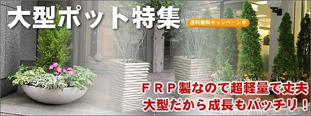 FRP製大型ポット FRP製なので超軽量で丈夫 大型で土もたっぷり、だから成長もバッチリ!