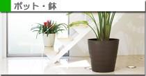 ケンガイ・長鉢 中鉢・りん鉢 洋ラン鉢 菊鉢 水栽ポット