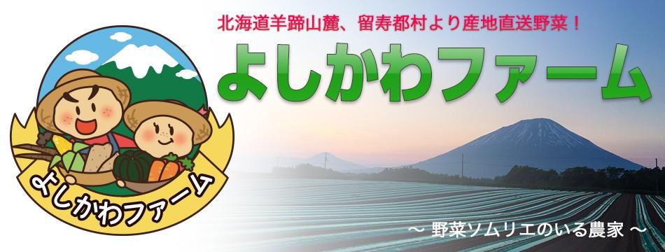 〜 北海道 留寿都村 〜野菜ソムリエのいるよしかわファーム