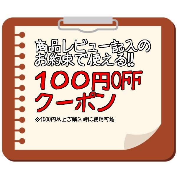 商品レビュー記入のお約束で使える!!100円OFFクーポン