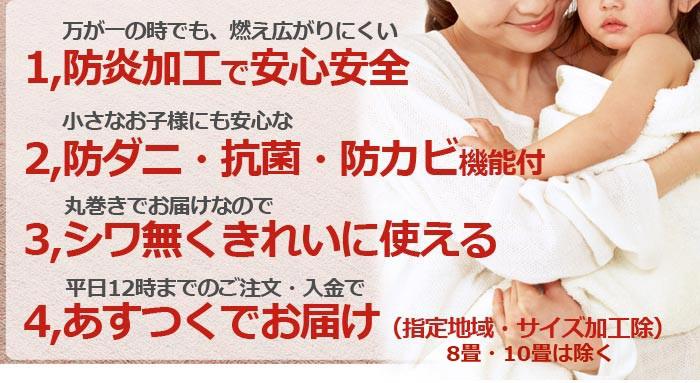 防炎カーペット エジンバラ2(N)防ダニ・抗菌