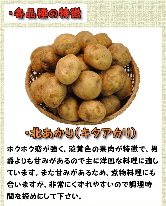 ・各品種の特徴 北あかり(キタアカリ)